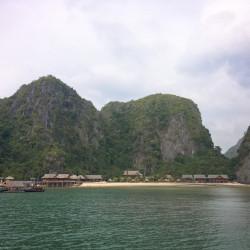 Ostrov Nam Cat